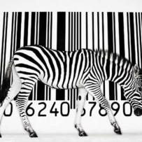 EAN & UPC – Trade Barcodes.